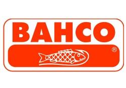 Logo Bacho